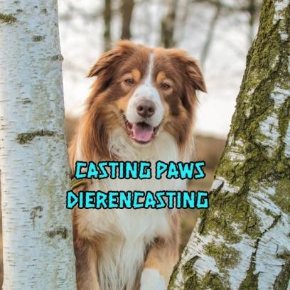 HondenModel